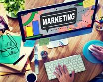 plan de marketing basico